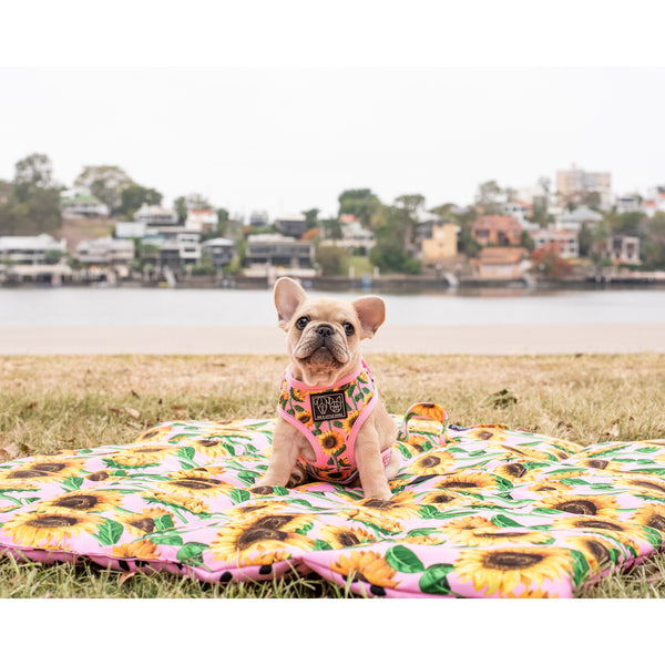 ON-THE-GO PET MAT: You Are My Sunshine