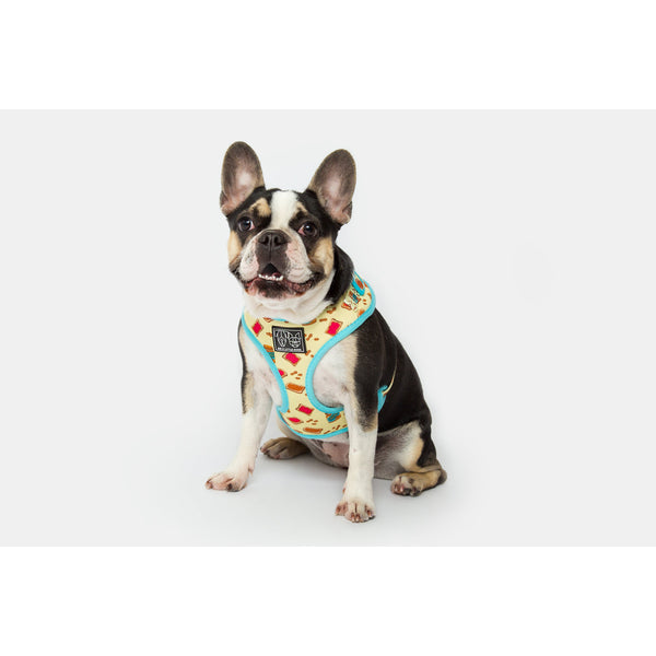 Peanut Butter Jelly Time Adjustable Dog Harness