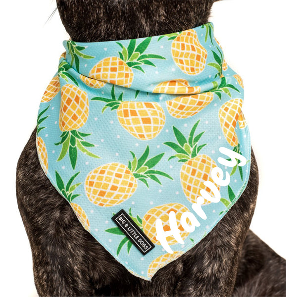 DOG BANDANA: Fine-apple