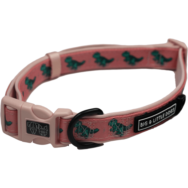 Raptor Orange Dinosaur Dog Collar