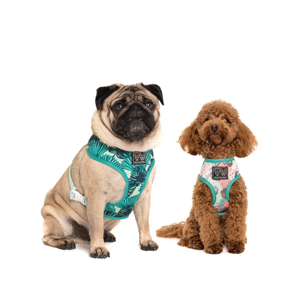 Reversible Dog Harness Neoprene and Mesh Miami Summer Palm Leaves Coconuts