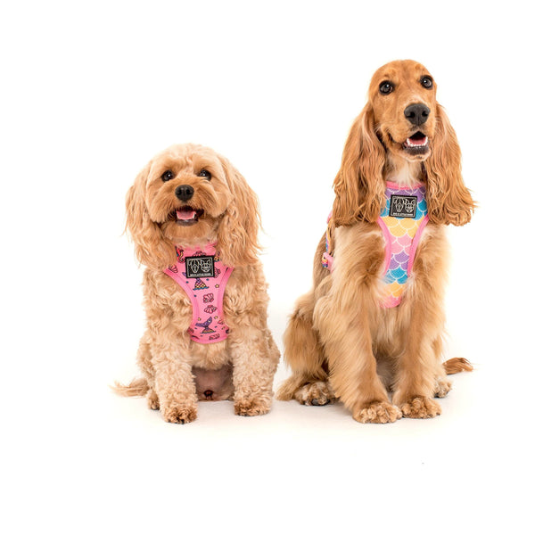 Sea Life Mermaid Scales Reversible Dog Harness