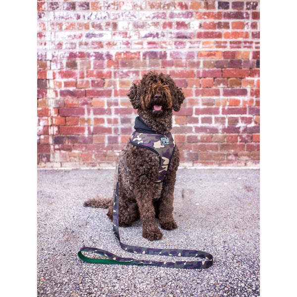 The General Camouflage Dog Hoody Harness