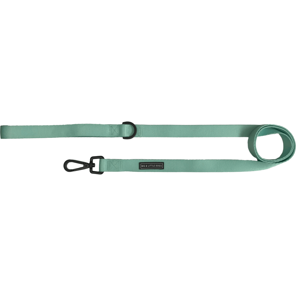 Dog Leash for Big and Small Dogs Classic Solid Teal