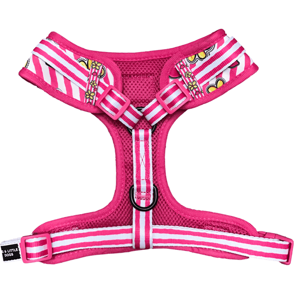 Adjustable Dog Harness for Big and Small Dogs Spring Time Flowers