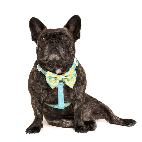 Dog Strap Harness with Bow Tie Fine-apple Pineapples