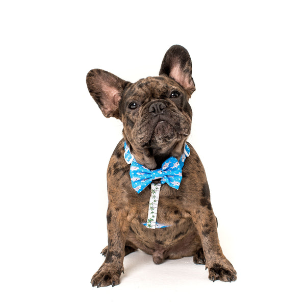 Shark Attack Palms Dog Strap Harness with detatchable Bow Tie