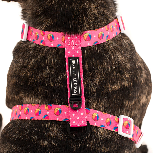 Dog Strap Harness with Bow Tie Having A Ball Beach Balls