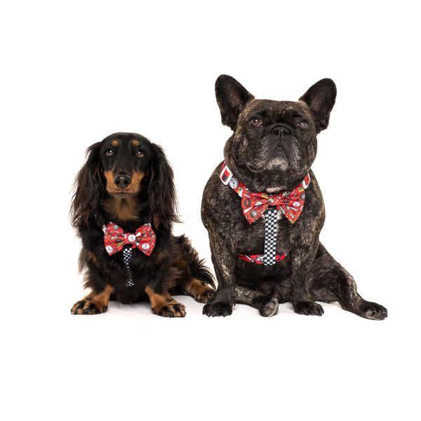 Strap Dog Harness with Bow Tie Need for Speed Car Parts Finish Line