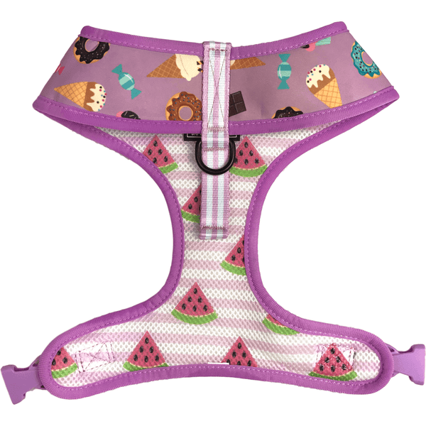 Dessert and Watermelon Reversible Dog Harness Front Neck View