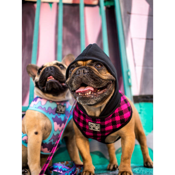 The Jill Pink Plaid Dog Hoody Harness