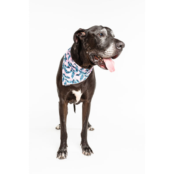 Neckerchief Bandana for Big and Small Dogs Tropical Paradise Palms