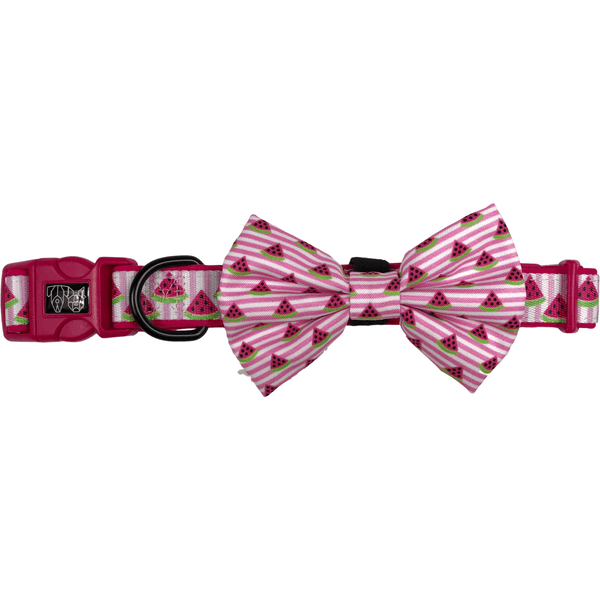 Watermelon Storm Dog Collar and Bowtie Set