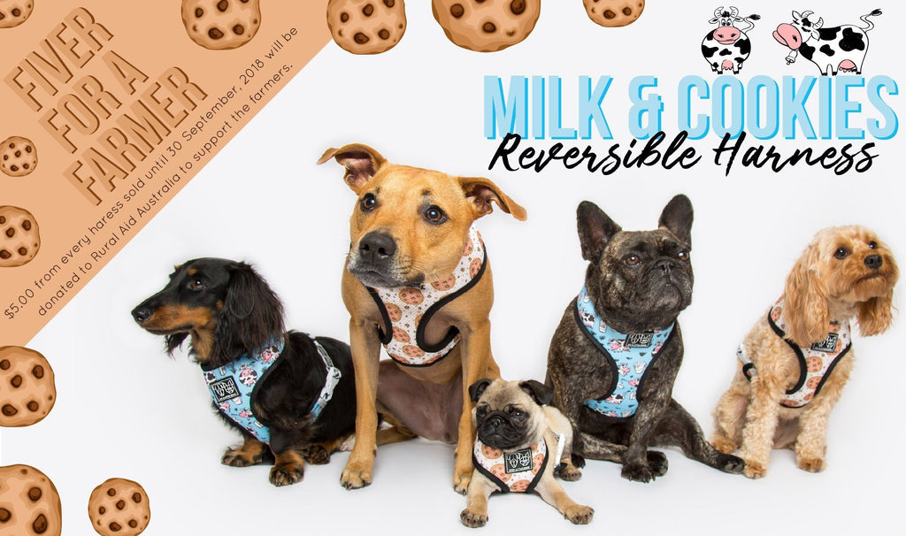 Big & Little Dogs | Reversible Dog Harness Sea Dog