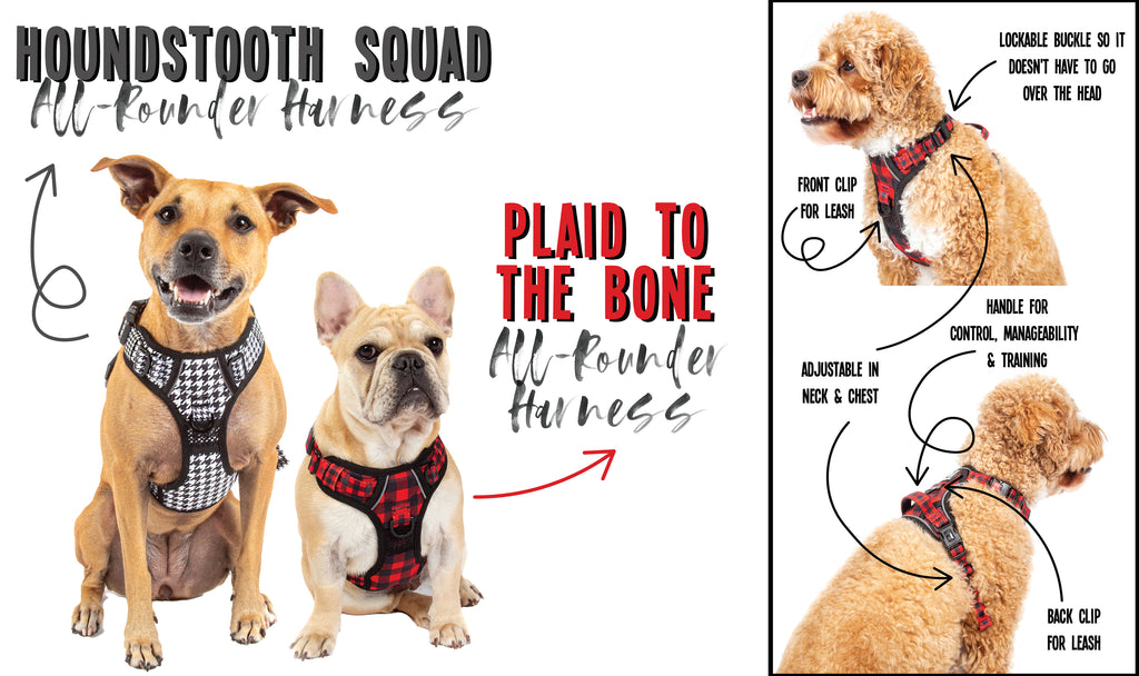 Big & Little Dogs | Reversible Dog Harness | Milk & Cookies