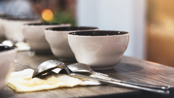 coffee in cupping bowls