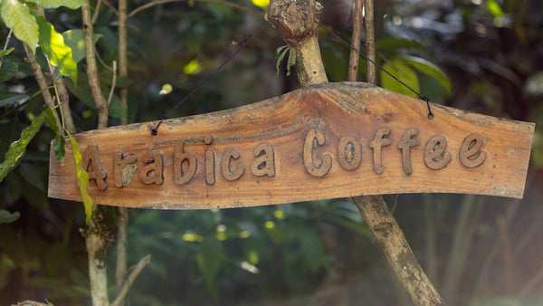 a wooden sign which reads 'arabica coffee'