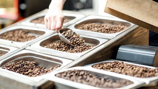 someone scooping coffee beans