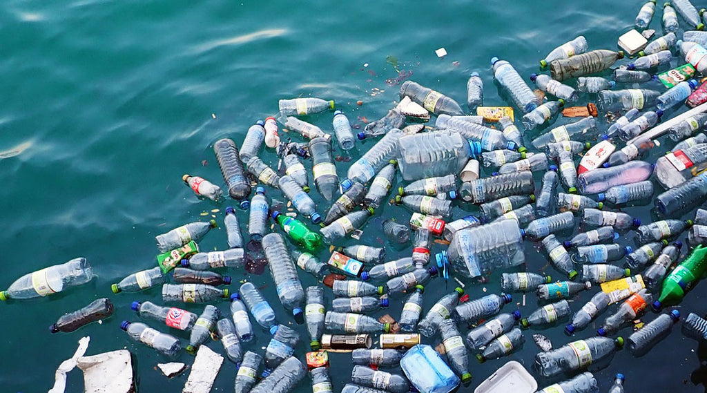 8 ways you can reduce the amount of plastic in our ocean