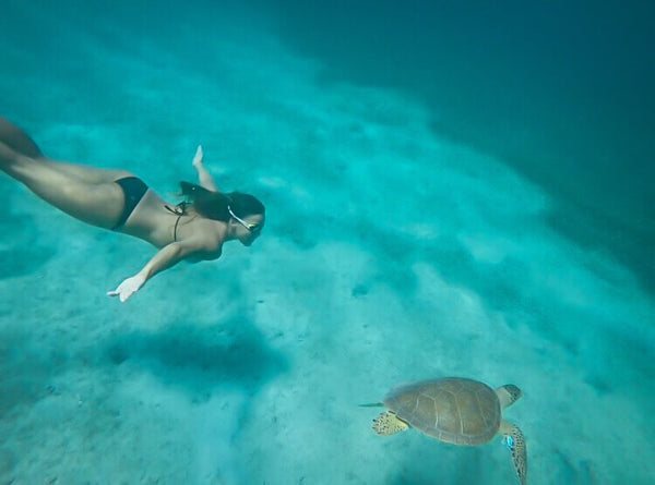 Swimming with turtles in Australia