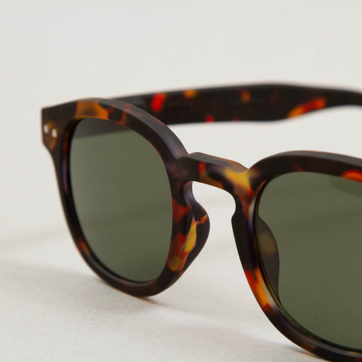 #C The Retro Sunglasses in TORTOISE GREENIZIPIZI - CACTWS