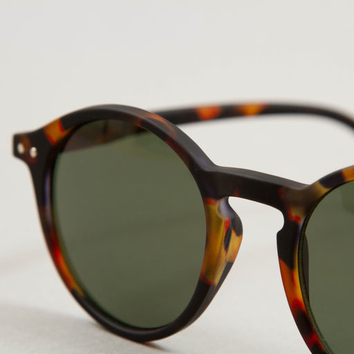 #D The Iconic Sunglasses in TORTOISE GREEN