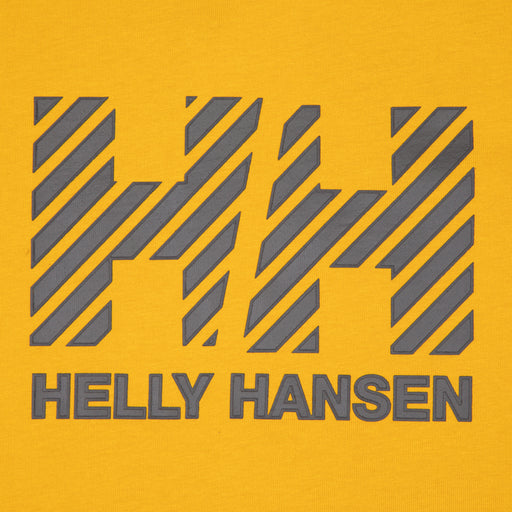 HELLY HANSEN Active T-Shirt in ARROWWOOD