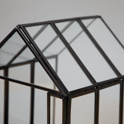 BEROGY Glass Terrarium Display Case in BLACK