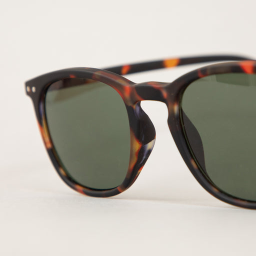 #E The Trapeze Sunglasses in TORTOISE GREENIZIPIZI - CACTWS