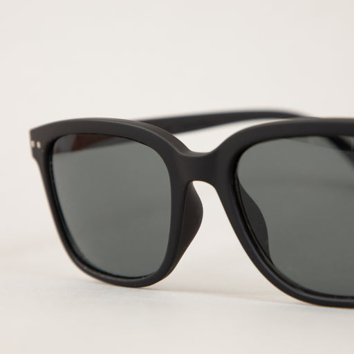 #L The Big One Sunglasses in BLACKIZIPIZI - CACTWS