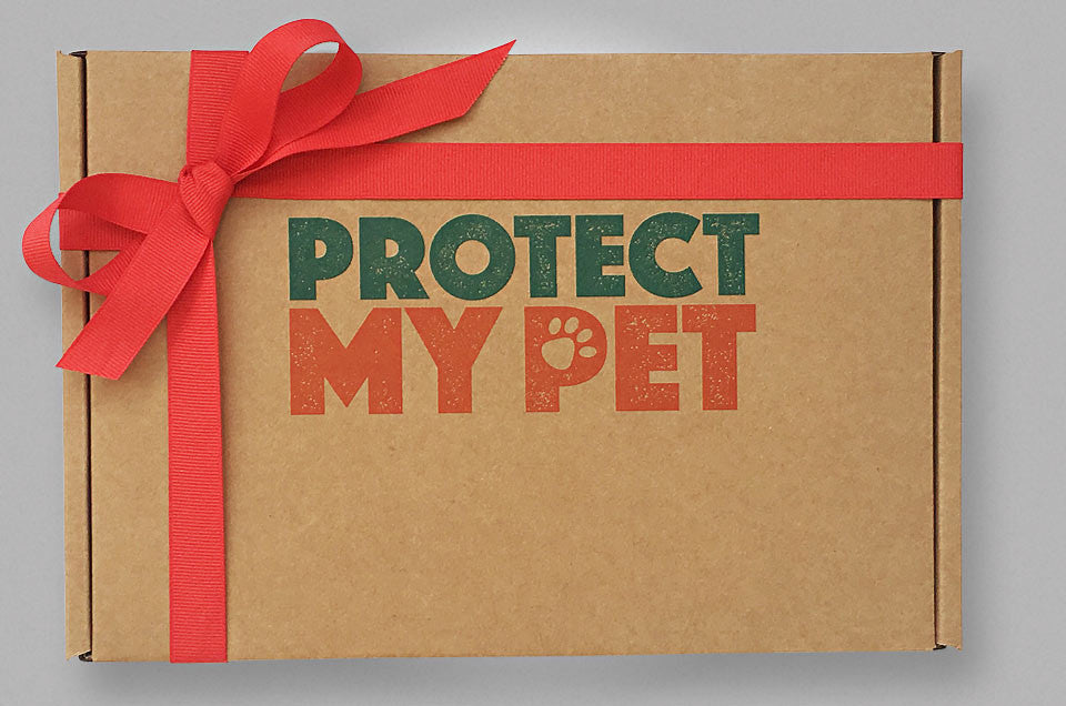 Tailored Dog Gift Box