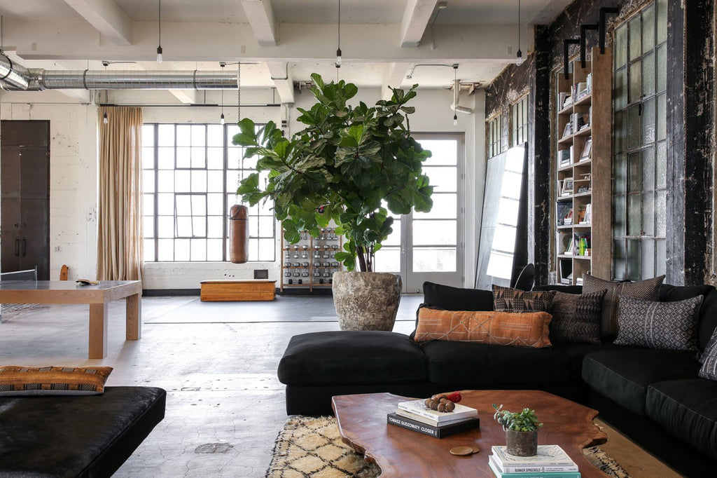 large indoor plant in industrial loft