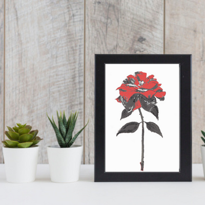 Enchanted Red Rose Art Print-Pen and ink-Brush Point Studio