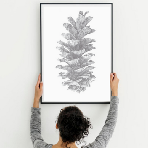 Pine Cone Art Print, done in pen and ink pointillism.