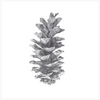 Pine Cone Original Artwork