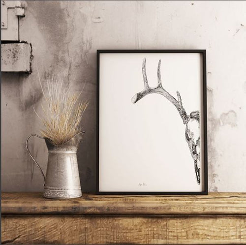 Half Deer Skull Art Print-Pen and ink-Brush Point Studio
