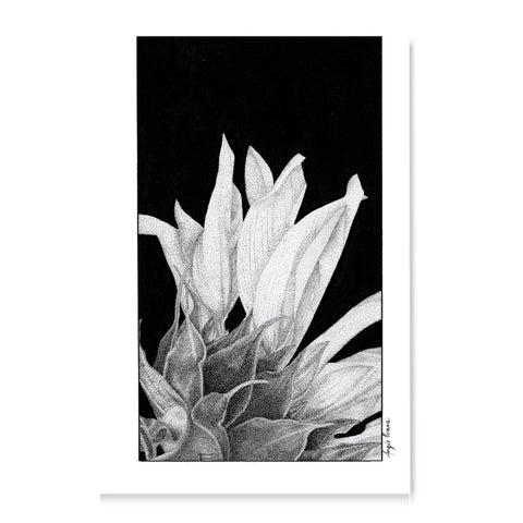 Sunflower-Art Print