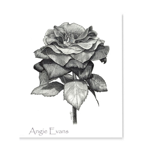 A rose drawn in black and white using ink on a white background.