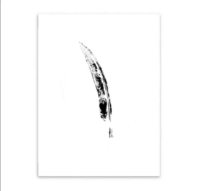 Single Feather Print-Brush Point Studio