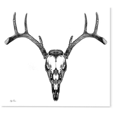 Full Deer Skull Art Print-Pen and ink-Brush Point Studio