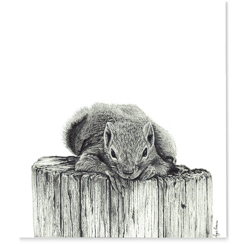 Squirrel-Art Print