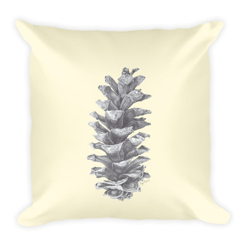 Single pine cone ink drawing printed on off white background.