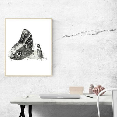 Owl Butterfly Art Print-Pen and ink-Brush Point Studio