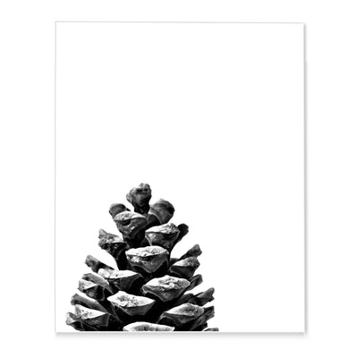 Pine Cone Poster-Print-Brush Point Studio