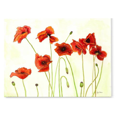 Largely white background with delicate red poppies with green stems
