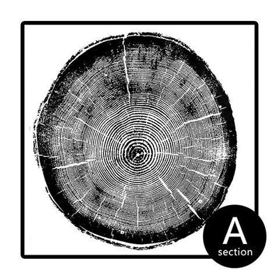 Modern Abstract Tree Ring Canvas Print-Print-Brush Point Studio