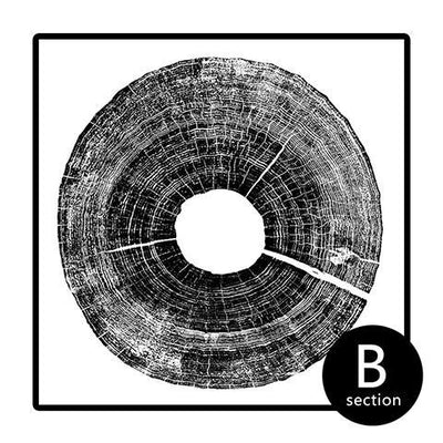 Modern Abstract Tree Ring Prints