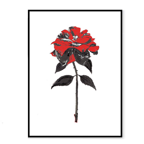 Black ink and red rose on a white background