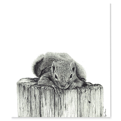 King of the Stump Original Artwork-Brush Point Studio