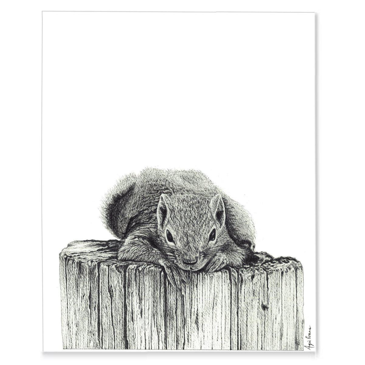 Wildlife Print Set-Squirrel and Rabbit-Print-Brush Point Studio